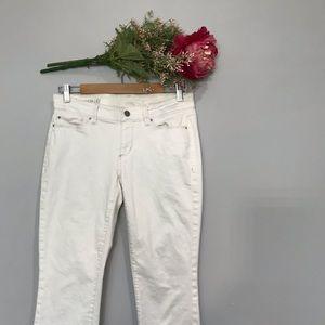 Ann Taylor | Modern Fit Low Rise Skinny Jeans SZ6